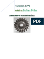 Informe 1 Turbina Pelton MN465