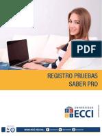 Instructivo Paso a Paso Registro (1)