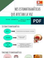 Alteraciones Estomatognáticas Que Afectan La Voz