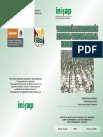 Tecnologia de Produccion de Nopal Verdura Para El Noroeste de Sonora