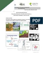 selection 1.1.pdf