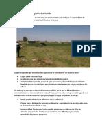 Agroecosistema, Irrigacion San Camilo, Informe