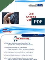 Coal Grinding Option