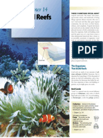 Introduction to corals.pdf