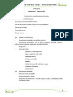 FORMATO INFORME VERDE.docx