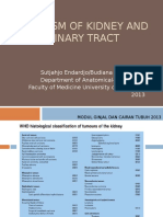 Kidney Neoplasm -Lok Pend-LW.2013