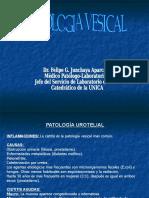 5. j. Patologia Vesical