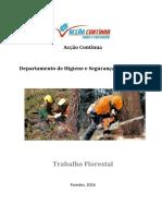 Trabalho Florestal (1)