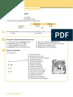 les demostratifs et les posessifs.pdf