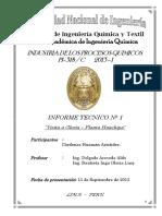 171025155-Informe-de-Visita-a-Gloria.docx