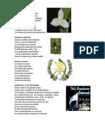 Poema a La Monja Blanca