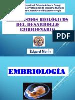 SEMANA 2 de Embriologia