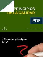 principios-calidadpdf4921
