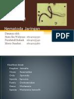 327632_25947_Parasitologi nematoda jaringan-1.pptx