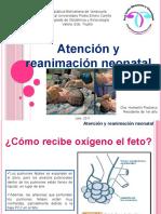 Reanimación neonatal.pptx