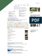 Peixe - Pesquisa Google