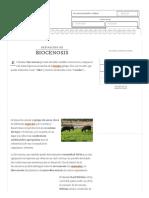 Definición de Biocenosis - Qué Es, Significado y Concepto
