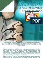 zika gestantes.pptx