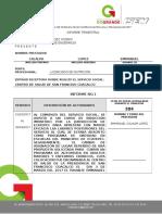 FORMATO 2 INFORME TRIMESTRAL EMMANUEL CALALPA.doc