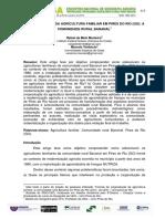 A (Re)Produção Da Agricultura Familiar Em Pires Do Rio (Go)