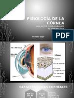 Fisiologia de La CORNEA-JV LISTO
