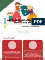 Apoyo Fonoaudiológico Al Currículum Escolar