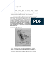 jurnal.docx