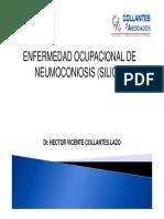 0 - NEUMOCONIOSIS.pdf