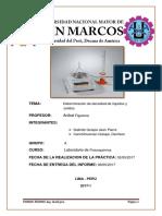 informe-de-fiqui-densidad.docx