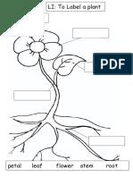 Plant Labelling