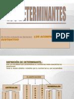 Los Determinantes Por Andrea Molina y Ana Carmona