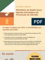 Coletiva Suicidio 21 09