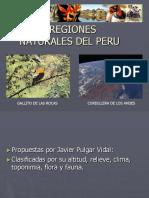 8reg-1-100811213603-phpapp01.pptx