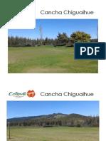 Cancha Chiguaihue
