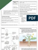 134156551-Ecology-Notes.docx