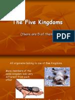Year 9 Kingdoms