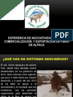 Experiencia_de_asociatividad_para_la_comercializacion_y_exportacion_de_fibra_de_alpaca_Juan_Portada.pptx