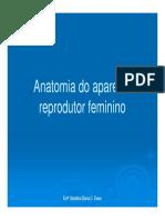 Anatomia Do Apar Reprod Fem e Embriogênese [Modo de Compatibilidade]