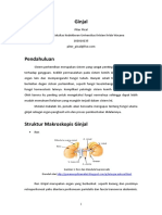 138523419-Piter-PBL-Blok-10.doc