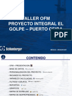 Manual de Ofm(Oil Field Manager)