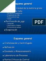 El Proceso de Elaboración de Azúcar de Caña.ppt
