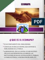 Ecomapa