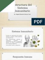 Estructura Del Sistema Inmunitario
