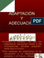 ADAPTACIÓN ADECUACIóN