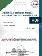 Modello di Hill PP.pdf