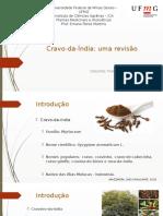 Revisão_Cravo-da-índia.pptx