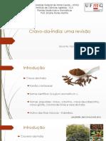 Revisão_Eugenia  Caryophyllata .pptx