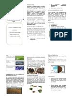 trictico-suelos (1).docx