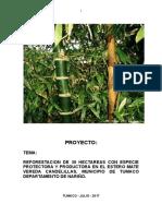 Proyecto de Reforestacion Estero Mate (6) Jander