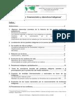 La Amazonia Cosmovision y Derechos Indigenas.2